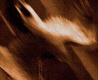 "AGALLOCH ""Ashes Against The Grain"" - rudeninių nuotaikų kolekcija"
