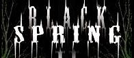"""""""Black Spring Fest II"""" – pavasario linksmybės"""