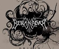 """BORKNAGAR """"Origin"""" - akustinė giedra"""