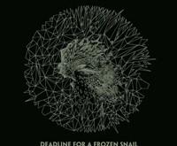 "MINOR MODESTY ""Deadline For A Frozen Snail"" – muzikinės roko mohikanų metamorfozės"