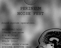 """""""Perineum Noise Fest"""" – reportažas iš triukšmo fiestos"""