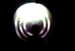 """""""Perineum Fest 2"""" - ar triukšmas tapo undergroundo karalium?"""