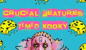 TIMID KOOKY, CRUCIAL FEATURES