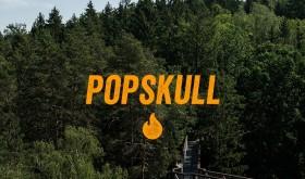 Savaitgalį Anykščių šilelio glūdumoje vyks minifestivalis POPSKULL
